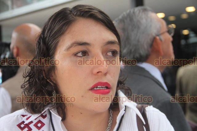 Protección Civil de Veracruz contempla financiamientos externos, ante recortes - alcalorpolitico