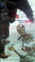 Chalchicomula, Puebla, 6 de marzo de 2015.- Fotos de los cuerpos momificados que fueron rescatados en el Pico de Orizaba, las im�genes fueron tomadas por el alpinista Hilario Aguilar Aguilar y difundidas por el Ayuntamiento de Chalchicomula.