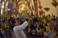 Xalapa, Ver., 29 de marzo de 2015.- Durante la homil�a dominical se bendijeron palmas y ramos por la celebraci�n del Domingo de Ramos que conmemora la entrada de Jes�s a Jerusal�n a lomo de un burro mientras era aclamado por la gente.