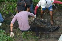 Veracruz, Ver., 29 de marzo de 2015.- El cuerpo encontrado en canal de aguas negras fue trasladado al Forense para determinar las causas del fallecimiento, quedando en calidad de no identificado.