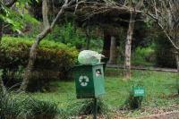 Xalapa, Ver., 21 de abril de 2015.- En el parque La Se�orita, en la zona de Las �nimas es evidente el descuido ya que hay encharcamientos en donde se podr�a reproducir el mosco transmisor del dengue, de igual manera los dep�sitos se observan repletos de basura.
