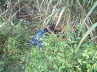 �ngel R. Cabada, Ver., 21 de abril de 2015.- Personas fallecidas tras enfrentamiento en la comunidad de Brazo de la Palma.