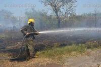 La Antigua, Ver., 27 de abril de 2015.- Los residuos de vidrios, reflejaron el llamado �efecto lupa� haciendo que con los rayos del sol, el fuego cobrara mayor fuerza. El fuego amenazaba con llegar a los domicilios cercanos.