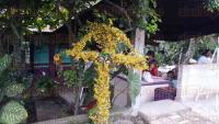 C�rdoba, Ver., 3 de mayo de 2015.- Buscando conservar la tradici�n del D�a de la Cruz, gente de la regi�n adorn� las cruces y las instalaron a orillas de las carreteras de la zona.