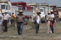 Veracruz, Ver., 25 de mayo de 2015.- Al inicio de la manifestaci�n hubo un altercado entre los transportistas de la CTM que bloquean el kil�metro 13.5, por lo que autoridades del puerto salieron a calmar los �nimos de los conductores de camiones de carga pesada pues estaban por iniciar un zafarrancho.