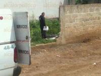Xalapa, Ver., 28 de mayo de 2015.- Fueron vecinos de la calle Hortensia quienes descubrieron el cuerpo en un lote bald�o la ma�ana de este jueves, dando aviso al 066 para que la autoridad procediera con lo debido.
