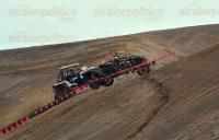 �rsulo Galv�n, Ver., 4 de julio de 2015.- En las dunas de Chachalacas se efectu� el