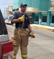 Boca del R�o, Ver. 5 de julio de 2015. La aparici�n de un reptil en el bulevar Ruiz Cortines, caus� asombro entre los visitantes; Bomberos y personal de Protecci�n Civil se movilizaron al lugar para ponerlo a salvo.