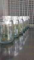 Coatepec, Ver. 5 de julio de 2015. El bi�logo Francisco J�come Bl�zquez, egresado de la UV, pretende promover la comercializaci�n de especies silvestres producidas en laboratorio, bajo condiciones reguladas por las autoridades estatales y federales.