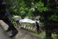 Xalapa, Ver., 6 de julio de 2015.- Elementos de Seguridad P�blica llegaron a la calle Veracruz esquina con Ciudad de Las Flores, de la colonia Rub�n Pabello, donde se encontraba un cuerpo.