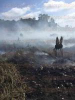 Villa Allende, Ver., 27 de julio de 2015.- La madrugada de este lunes ocurri� el incendio del basurero en esta comunidad, localizado en un �rea c�ntrica, a su alrededor se encuentran ubicadas algunas viviendas; se observ� el levantamiento de grandes nubes de humo.