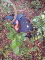 Catemaco, Ver., 28 de julio de 2015.- Agentes del Ministerio P�blico llegaron al terreno en la zona conocida como �La Graver�a�, ante el reporte del hallazgo de un cuerpo, el cual fue trasladado al SEMEFO y hasta el momento sigue en calidad de desconocido.
