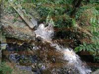 Poza Rica, Ver., 31 de agosto de 2015.- Personal de PEMEX atiende una fuga de hidrocarburo que se registr� en el arroyo El Hueleque, a la altura de la colonia Aviaci�n Vieja.