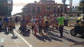Coatepec, Ver., 4 de octubre de 2015.- Por el tercer Festival de las Aves, el Comit� ciudadano que auxilia en las actividades de dicho festival organiz� una amena y sana convivencia entre familias y mascotas.