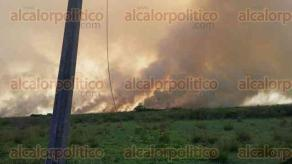 Guti�rrez Zamora, Ver., 7 de octubre de 2015.- Incendio se registr� en la comunidad de Mario Hern�ndez Posadas, por lo cual cuerpos de emergencia de toda la zona se han sumado a las labores.