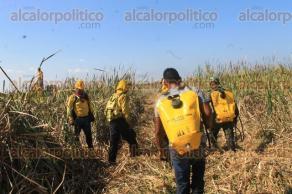 Guti�rrez Zamora, Ver., 8 de octubre de 2015.- El Comando Unificado que atiende el incendio en los municipios de Guti�rrez Zamora y Tecolutla, descart� que se haya afectado mangle. En un 90% de pastizales y al corte de las 15:00 horas suman unas 200 hect�reas siniestradas.