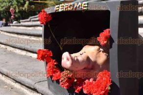 Xalapa, Ver., 30 de noviembre de 2015.- Isabela Selari�, alumna de la Facultad de Artes Pl�sticas de la Universidad Veracruzana, realiz� en Plaza Lerdo al mediod�a de este lunes una representaci�n del modelo capitalista que vivimos hoy en d�a, con la finalidad de hacer conciencia entre la poblaci�n.