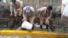 Xalapa, Ver., 12 de febrero de 2016.- Reporta CMAS que personal operativo de la Comisi�n repara fuga de agua en la avenida �vila Camacho.
