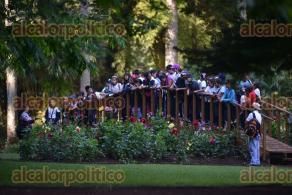 Xalapa, Ver., 28 de abril de 2016.- Ni�os de distintas escuelas asistieron al Jard�n Bot�nico �Francisco Javier Clavijero�, tuvieron un acercamiento con la naturaleza como parte de las actividades del D�a mundial de la tierra.