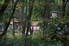 Xalapa, Ver., 4 de mayo de 2016.- Contin�a la invasi�n del predio El Roble, ubicado en el �Bosque de Niebla�; misma que genera deforestaci�n, basura y aguas residuales dom�sticas que son depositadas en el humedal del Santuario.