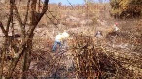 Ixtaczoquitl�n, Ver., 23 de mayo de 2016.- Brigadistas de la CONAFOR, PC y habitantes sofocaron la tarde de este lunes el incendio de pastizales y arbustos, en el cerro de La Cotorra. Se confirm� que fueron 5 hect�reas incendiadas, debido a una quema agr�cola que se sali� de control.