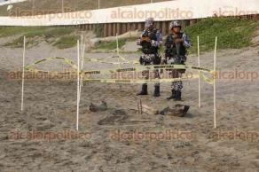 Boca del R�o, Ver., 26 de mayo de 2016.- Una tortuga arrib� a la playa �El Morro�, donde deposit� una cantidad importante de huevos, mismos que ya son resguardados por elementos de la Polic�a Naval; el quelonio fue trasladado al Acuario de Veracruz para instalarle un localizador y luego ser� puesta en libertad.