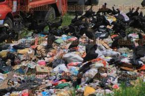 Papantla, Ver., 29 de junio de 2016.- Luego del cierre del basurero municipal en San Antonio Ojital, deportistas, transe�ntes y automovilistas notaron que a un costado de la unidad deportiva hab�a una gran cantidad de desechos, pero los camiones continuaban llegando para depositar m�s basura.