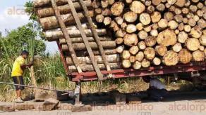 Cuichapa, Ver., 29 de julio de 2016.- A este tr�iler que transportaba troncos de las fincas huleras de Tezonapa; al llegar a los topes de Providencia, se le destrabaron los dos remolques. Afortunadamente no pas� a mayores.