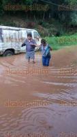 Xalapa, Ver., 23 de agosto de 2016.- As� de inundada luce la colonia 3 de Mayo por las lluvias de los �ltimos d�as.