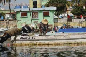 Veracruz, Ver., 25 de septiembre de 2016.- Pescadores de la cooperativa