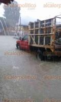 Xalapa, Ver., 25 de septiembre de 2016.- Debido a la fuerte lluvia de este domingo el r�o Carneros se desbord� a la altura de la Luz del Barrio y a las 15:45 horas corr�a mucha agua hacia la zona de Coapexpan.