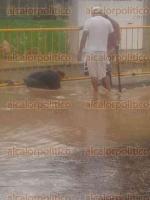 Xalapa, Ver., 25 de septiembre de 2016.- Una decena de viviendas se inundaron en la calle Montevideo, a ra�z de la intensa precipitaci�n de este domingo. Habitantes no reciben apoyos de las autoridades cada vez que pierden sus pertenencias por las fuertes lluvias.
