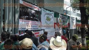 Ciudad de M�xico, 26 de Septiembre de 2016.- Cientos de campesinos de diversas organizaciones mantienen un plant�n afuera de la Sagarpa en las oficinas centrales. La delegaci�n de Veracruz se une para exigir recursos al campo.