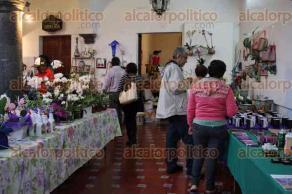 Coatepec, Ver., 28 de agosto de 2016.- Se inaugur� el Festival de Orqu�deas en la Casa de Cultura, en donde el p�blico podr� adquirir estas flores y otros productos. Estuvo presente Silvia Monge.