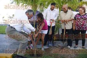 Veracruz, Ver., 21 de octubre de 2016.- Un grupo de ciudadanos, con el respaldo de la SEMAR, iniciaron la reforestaci�n del Centro Hist�rico con la siembra de las primeras 17 palmas Kerpis, a un costado del edificio Faro Venustiano Carranza.