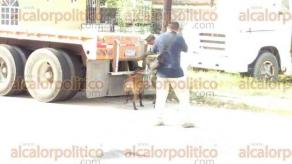 Coatzacoalcos, Ver., 2 de diciembre de 2016.- Este viernes, frente a las instalaciones de la Procuraduría General de la República en este municipio, personal ministerial y del Ejército decomisó droga que fue hallada en un tráiler.