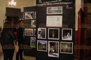 Xalapa, Ver., 5 de diciembre de 2016.- Se inauguró la Expoventa de Navidad en la Escuela Industrial que se desarrollará del 5 al 9 de diciembre en dicho inmueble.