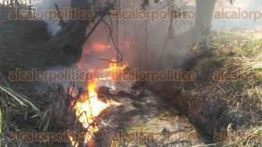"""Amatlán, Ver., 18 de enero de 2017.- Los derrames que provocan los """"chupaductos"""" contaminaron un arroyo que atraviesa por Amatlán y Cuichapa, provocando que al incendiar los cañales para su corte, el cuerpo de agua siga ardiendo y causando la mortandad de peces."""