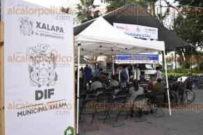 Xalapa, Ver., 19 de enero de 2017.- La mañana de este jueves se efectuó el programa