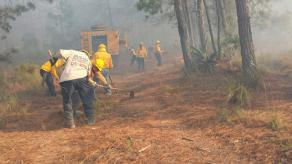 22 de enero de 2017.- Combatientes de CONAFOR, ejidatarios, policías y PC municipal trabajan en extinguir incendios forestales en el Cerro las Cruces en el municipio de Nogales; Huapala, en Las Minas y uno más en los límites de los municipios de Acajete y Las Vigas de Ramírez.