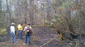 Tlacolulan, Ver., 25 de febrero de 2017.- CONAFOR reporta que el incendio en el paraje denominado El Duraznal inició el viernes, registrando hasta el momento un avance del 80% de control en una superficie de aproximadamente 12 hectáreas de bosque de pino.