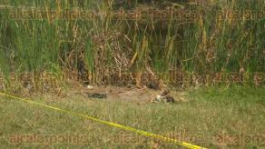 Poza Rica, Ver., 23 de abril de 2017.- Policías y elementos de la Fiscalía Regional tomaron conocimiento de una osamenta hallada en la colonia Rafael Hernández Ochoa. En el cráneo hallado se apreciaba un orificio presumiblemente por proyectil de arma de fuego.