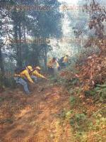 Acultzingo, Ver., 21 de mayo de 2017.- Brigadistas de CONAFOR, SEDEMA y voluntarios combaten un segundo incendio en el paraje Tierra Colorada. La tarea se realiza por tierra, ya que las condiciones del lugar y las rachas de viento no son favorables para el apoyo aéreo.