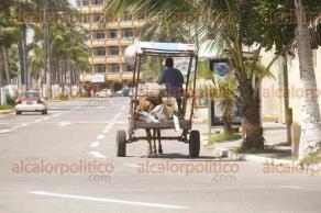 Veracruz, Ver., 16 de agosto de 2017.- Aún circulan carretas tiradas por caballos, a pesar de que la Fiscalía Especializada en Delitos contra el Medio Ambiente y los Animales, otorgó una prórroga que venció el 2 de agosto.