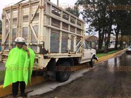 Xalapa, Ver., 22 de agosto de 2017.- La tarde de este martes una camioneta presuntamente se quedó sin frenos, por lo que impactó un árbol en la avenida Lázaro Cárdenas, a la altura de Urban Center.