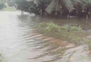 Agua Dulce, Ver., 18 de octubre de 2017.- A través de redes sociales se difunden imágenes de diversas colonias de Agua Dulce que se encuentran ya inundadas; algunos automóviles se quedaron incluso varados en medio de la creciente del río Aguadulcita.
