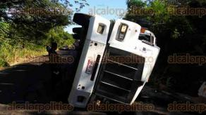 Tepetzintla, Ver., 21 de noviembre de 2017.- En la carretera Alazán-Canoas, a la altura de la localidad de Apachicruz, un tráiler que transportaba ganado volcó por ir a exceso de velocidad, muriendo 50 semovientes.