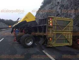 Perote, Ver., 22 de marzo de 2018.- Un tractocamión que circulaba sobre la carretera Perote-Xalapa, terminó volcado la tarde de este jueves luego de que se le desprendiera el eje trasero. No se reportaron lesionados.