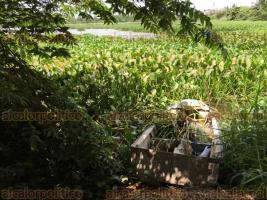 Veracruz, Ver., 22 de mayo de 2018.- La Laguna de Lagartos, parte del sistema lagunar interdunario de Veracruz, está repleta de lirio acuático y follaje. Vecinos urgen que Grupo MAS atienda el sitio.