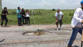 Alvarado, Ver., 16 de julio de 2018.- Habitantes plantaron arbolitos, ramas y nopales en hoyancos de carretera que va a San Andr�s Tuxtla. Advierten a autoridades que si no atienden afectaciones tomar�n medidas dr�sticas.